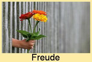 03 Freude - Zen Frankfurt City